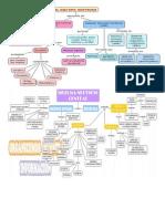 Mapa Conceptual Sistema Nervioso