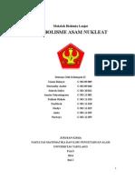 Anabolisme Asam Nukleat Kel2