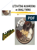 Cultivating Mushrooms in Small Farms