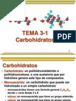 Tema 3-1 Carbihidratos