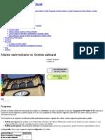 Máster Universitario en Gestión Cultural _ Universitat de Barcelona