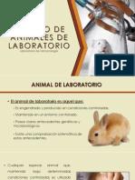 Manejo de Animales de Laboratorio_farmacologia