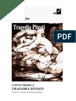 Costin Merisca - Tragedia Pitesti v.0.9.2