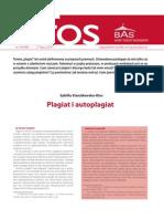 Plagiat i Antyplagiat Biuro Analiz Sejmowych