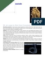 Root Knot Nematode Pest Control