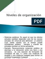 Niveles de Organización Estatica