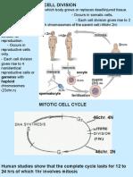 L1. Mitosis & Meiosis