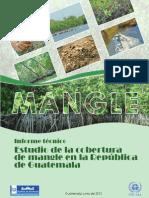 Estudio de La Cobertura de Mangle en Guatemala FINAL