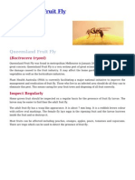 Queensland Fruit Fly Control in your Garden