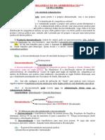 Administrativo-Organização Da Adm.
