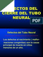 Defectos de Falta de Cierre Del Tubo Neural 2