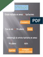 fisiologiaendocrina2