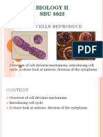 Topic 1 - How Cell Reproduces
