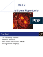 Topic 2 - Meiosis and Sexual Reproduction
