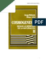 Cosmogenesis Según La Memoria de La Naturaleza (Jorge Elías Adoum)