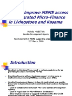 SME Action Plan (Michelo)