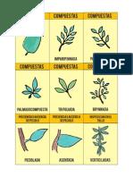 Cartas contorn.pdf