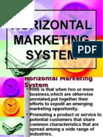 Horizontal Marketing System