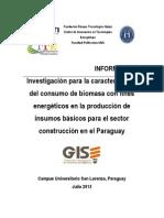 Investigación para la caracterización del consumo de biomasa con fines energéticos en la producción de insumos básicos para el sector construcción en el Paraguay..pdf