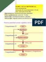 Protocolo Dx de Alteraciones Del Ciclo Menstrual