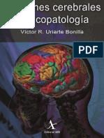 Funciones Cerebrales y PsicopatologÃ-A