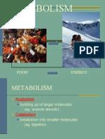 09 Metabolism