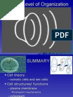 04 Cells
