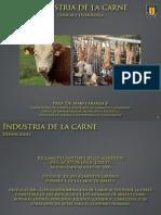 PDF-carnes Industria de Alimentos
