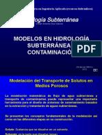 Modelos Transporte de Solutos 2013