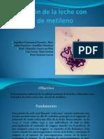 Micro p.p Con Conclusion y Reacciones II
