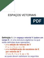 Algebra Linear Espaços Vetoriais