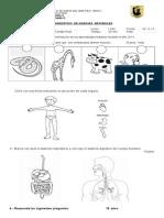 DIAGNOSTICO NATURALEZA