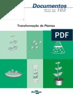 Transformacao de Plantas