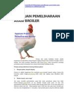 Panduan Pemeliharaan Ayam Broiler