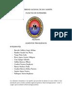 ALIMENTOS TRANSGENICOS.docx