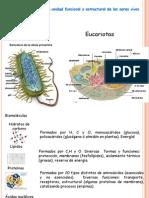 Celula y Metabolismo 01