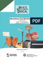 Big band-Miscelânea-Trio-Nordestino.pdf
