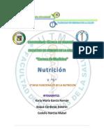 Carpeta Nutricion Etapas Funcionales de La Nutricion