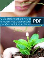 Guia de Ayudas e Incentivos para empresas en Castilla-La Mancha