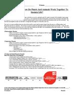 copyof2014onlinephotosynthesisrespirationandecologyproject 1