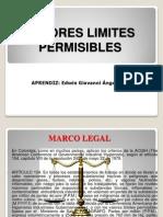 Valores Limites Permisibles Exposicion Giovanni Angel (1)