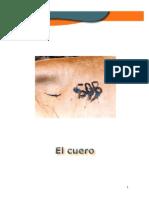 El Cuero- Cartilla 2(3) Taller3