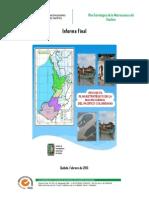 Plan Estratégico de La Región Del Pacifico Colombiana - Diagnóstico