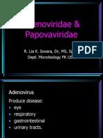Adeno&papovaviridae