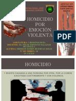 Homicidio Por Emoción Violenta