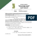Adjunto Documento