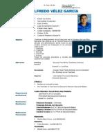 Curriculum Luis Velez