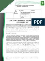 Doc. 612 Concepto 133 Uniones temporales y consorcios NIIF.pdf