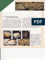 Cap.6 Fungos