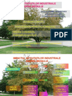 1_impact Acticitatii Industriale Asupra Mediului
